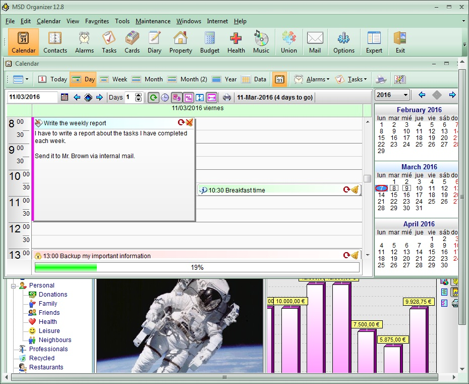 MSD Organizer Freeware Screen shot
