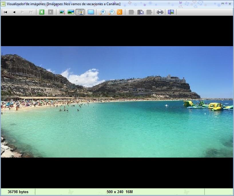 MSD TopDiary 1.00 visualizador de imágenes