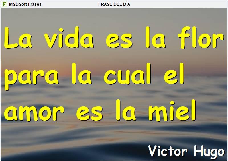 MSDSoft Frases - Frases inspiradoras - Victor Hugo - La vida es la flor
