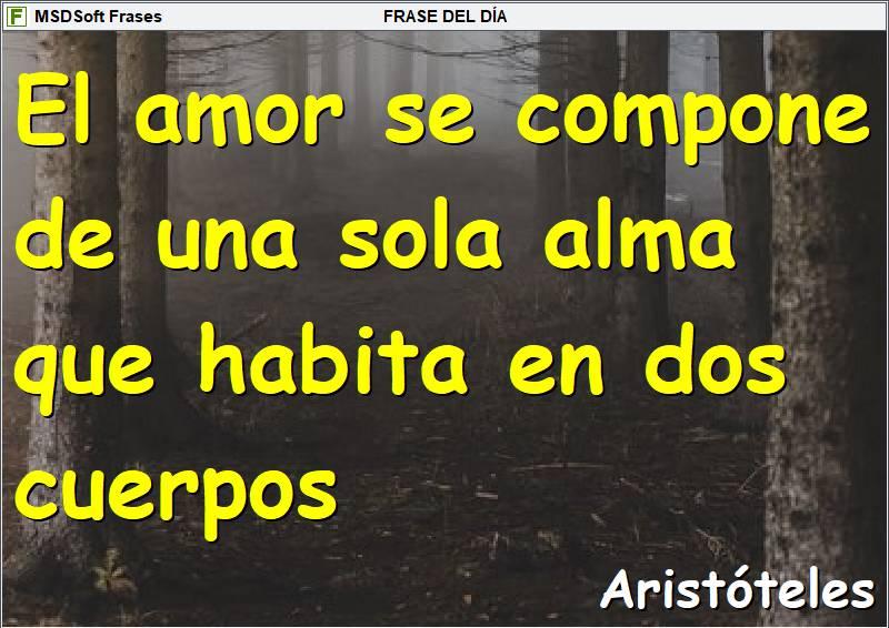 Frases inspiradoras - MSDSoft Frases - Aristóteles - El amor se compone de una sola alma que habita en dos cuerpos